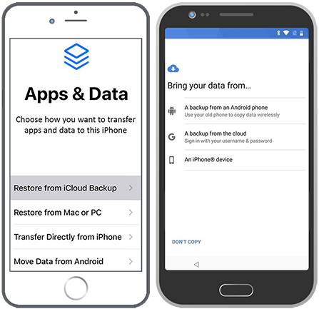 restore deleted files from mobile device backup